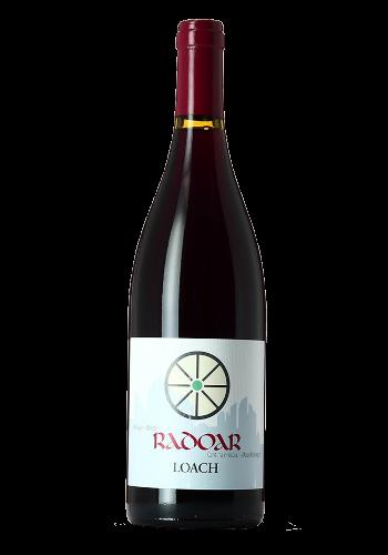 LOACH Pinot Nero, Zweigelt/Radoar